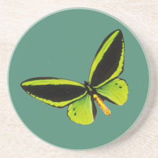 Green longwing butterfly design coasters