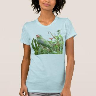 Green Lorikeet Jersey Bird T-Shirt