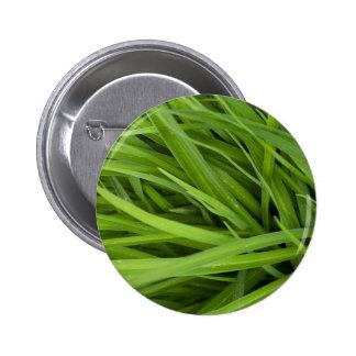 Green Lush Grass Pinback Button