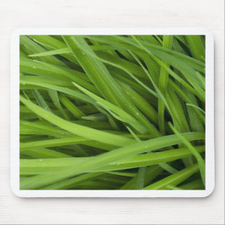 Green Lush Grass Mouse Pad