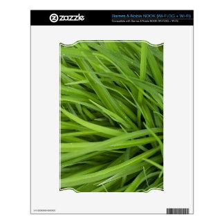 Green Lush Grass NOOK Decal
