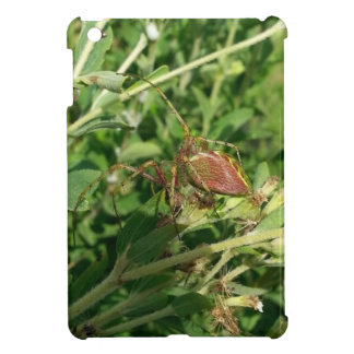 Green Lynx Spider Case For The iPad Mini