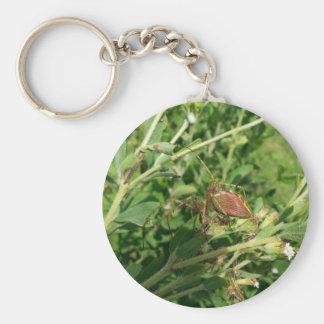 Green Lynx Spider Keychain