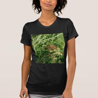 Green Lynx Spider T Shirt