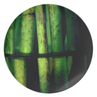 Green macro dinner plate