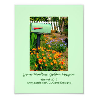 Green Mailbox, Golden Poppies Photo Print
