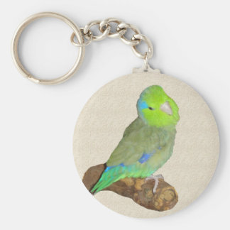 Green male parrotlet keychain