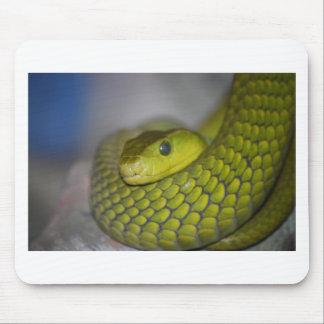 Green Mamba Mouse Pad