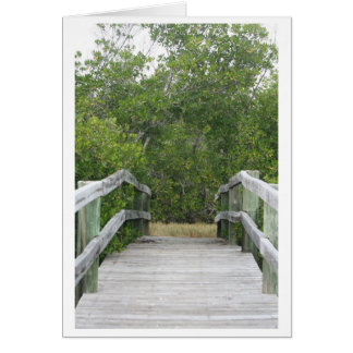 Green mangrove background, dock leading in stationery note card