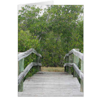 Green mangrove background, dock leading in greeting card