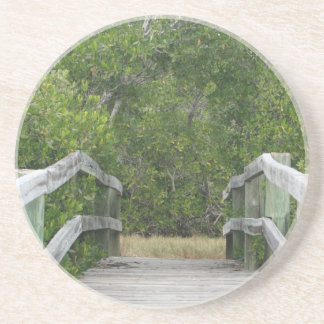 Green mangrove background, dock leading in drink coasters