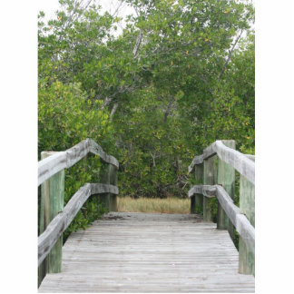 Green mangrove background, dock leading in photo sculpture ornament
