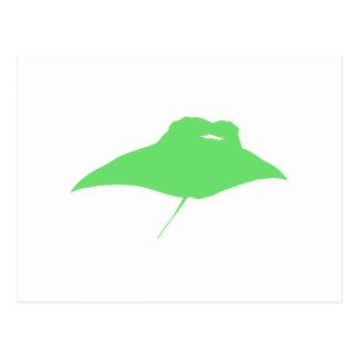 Green Manta Ray Post Cards