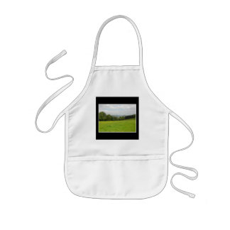 Green meadow. Countryside scenery. Aprons