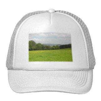 Green meadow. Countryside scenery. Hat