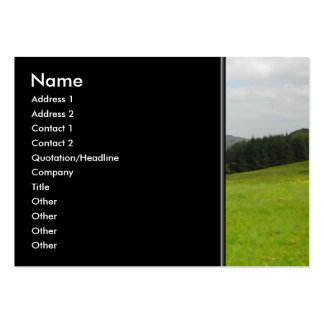Green meadow. Countryside scenery. Large Business Card