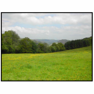 Green meadow. Countryside scenery. Photo Cut Out