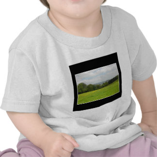 Green meadow. Countryside scenery. T-shirt