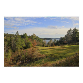 Green Meadow Views Poster