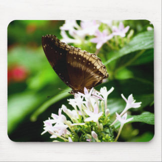 Green melody ! mouse pad