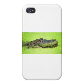 Green Monster iPhone 4/4S Cases