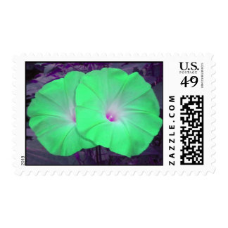 Green Morning Glory Duo postage