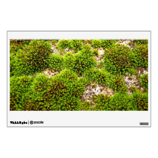 Green Moss Covers Rock Wall Decal