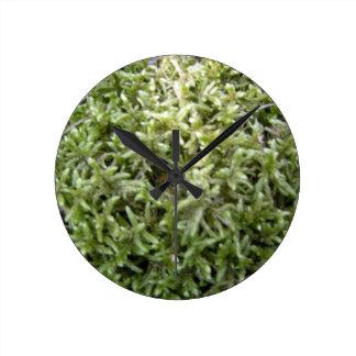 Greenmoss Round Clock