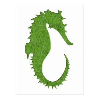 Green Moss Seahorse Postcard