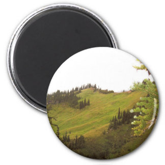 Green Mountain Meadow Mt Rainier National Park 2 Inch Round Magnet