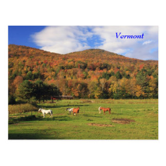 Green Mountains and Horses in Autumn Postcard
