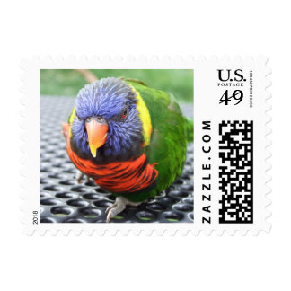 Green Naped Lory Postage Stamps
