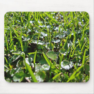 Green natue mouse pad