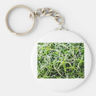 Green nature Leafs natural natural  Green Trees Ea Keychain