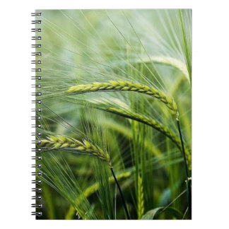 Green Nature Relax Paradise Notebook