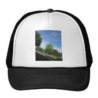 GREEN nature tree skyline NewJersey USA NVN675  GI Hat