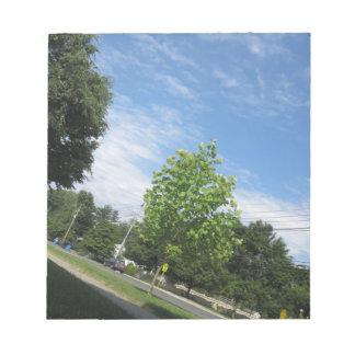 GREEN nature tree skyline NewJersey USA NVN675 GI Memo Notepads