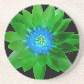 green neat water lily flower against green leaves beverage coasters