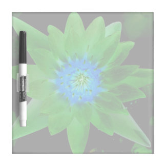 green neat water lily flower against green leaves dry erase whiteboards