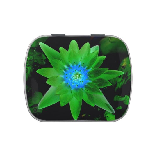green neat water lily flower against green leaves jelly belly candy tins