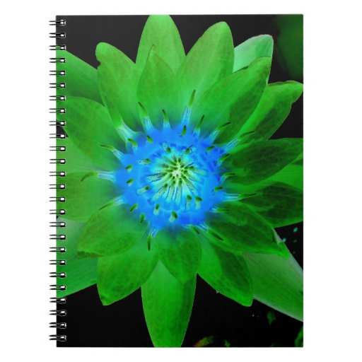 green neat water lily flower against green leaves spiral notebooks