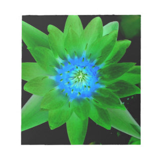 green neat water lily flower against green leaves memo notepad