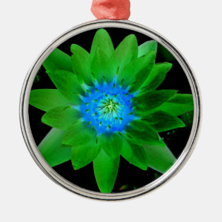 green neat water lily flower against green leaves christmas ornaments