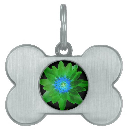 green neat water lily flower against green leaves pet name tag
