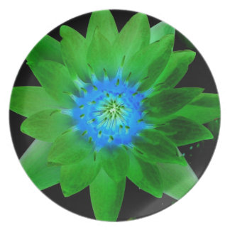 green neat water lily flower against green leaves party plates