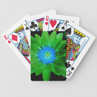 green neat water lily flower against green leaves deck of cards