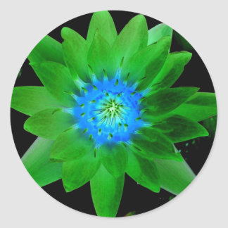 green neat water lily flower against green leaves round sticker