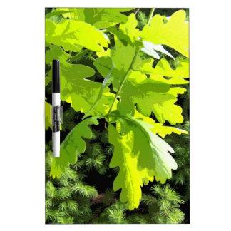 Green Oak Tree Leaves Dry Erase Board