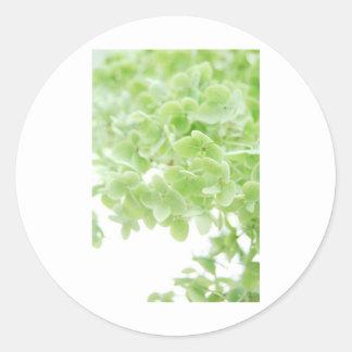 Green Oasis Classic Round Sticker