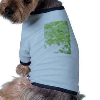 Green Oasis Dog Shirt